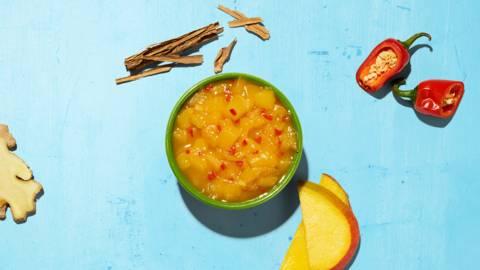 Mango-Chutney Udaipur